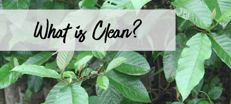 WHAT IS CLEAN?